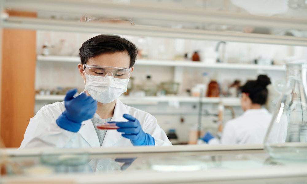 l'immunothérapie est une approche prometteuse pour lutter contre le cancer